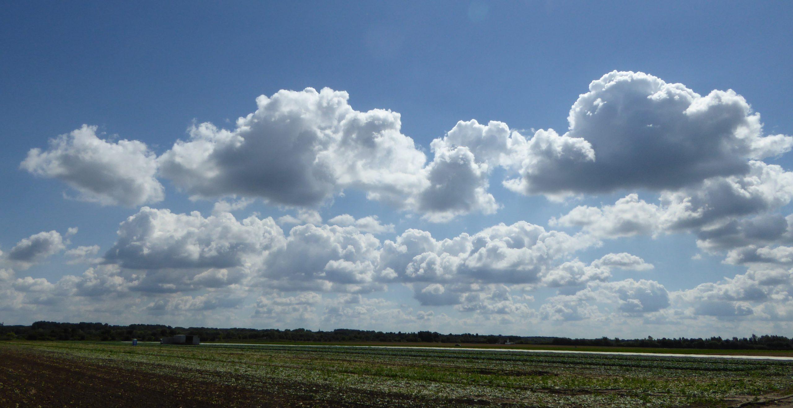 Niederrheinische Heimatwolken