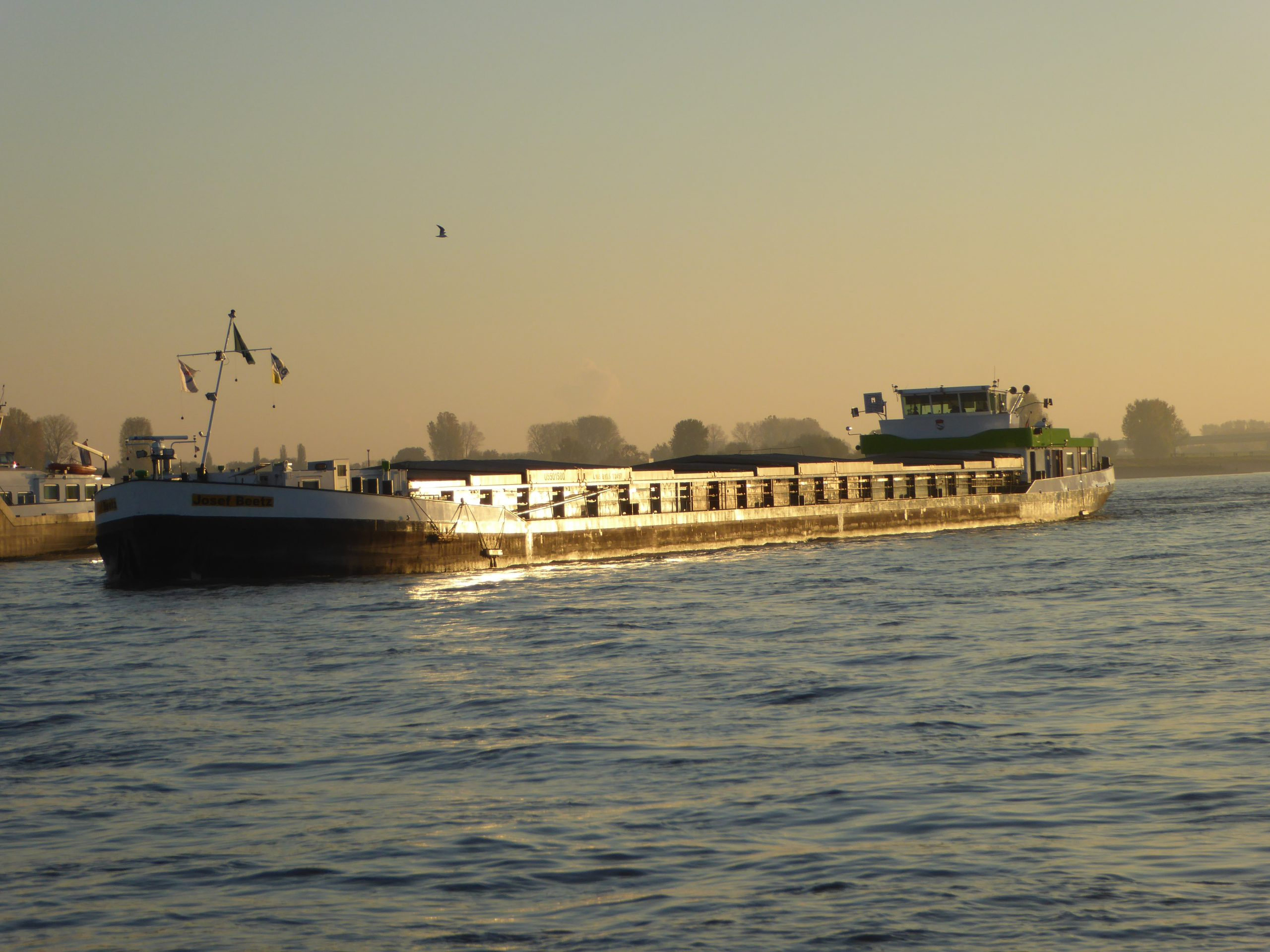 13 Rheinschiff