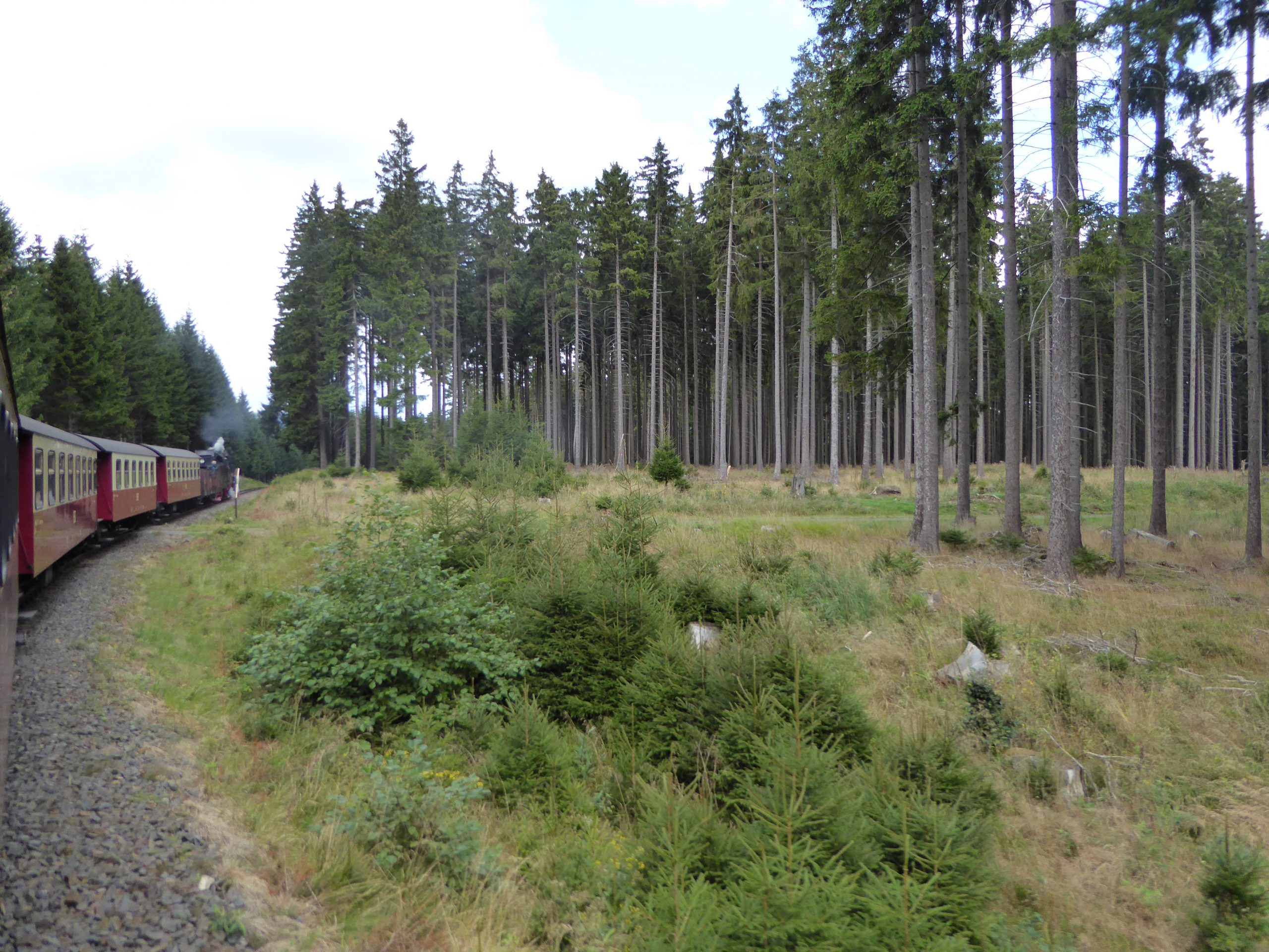 09 Harz Impr. 2