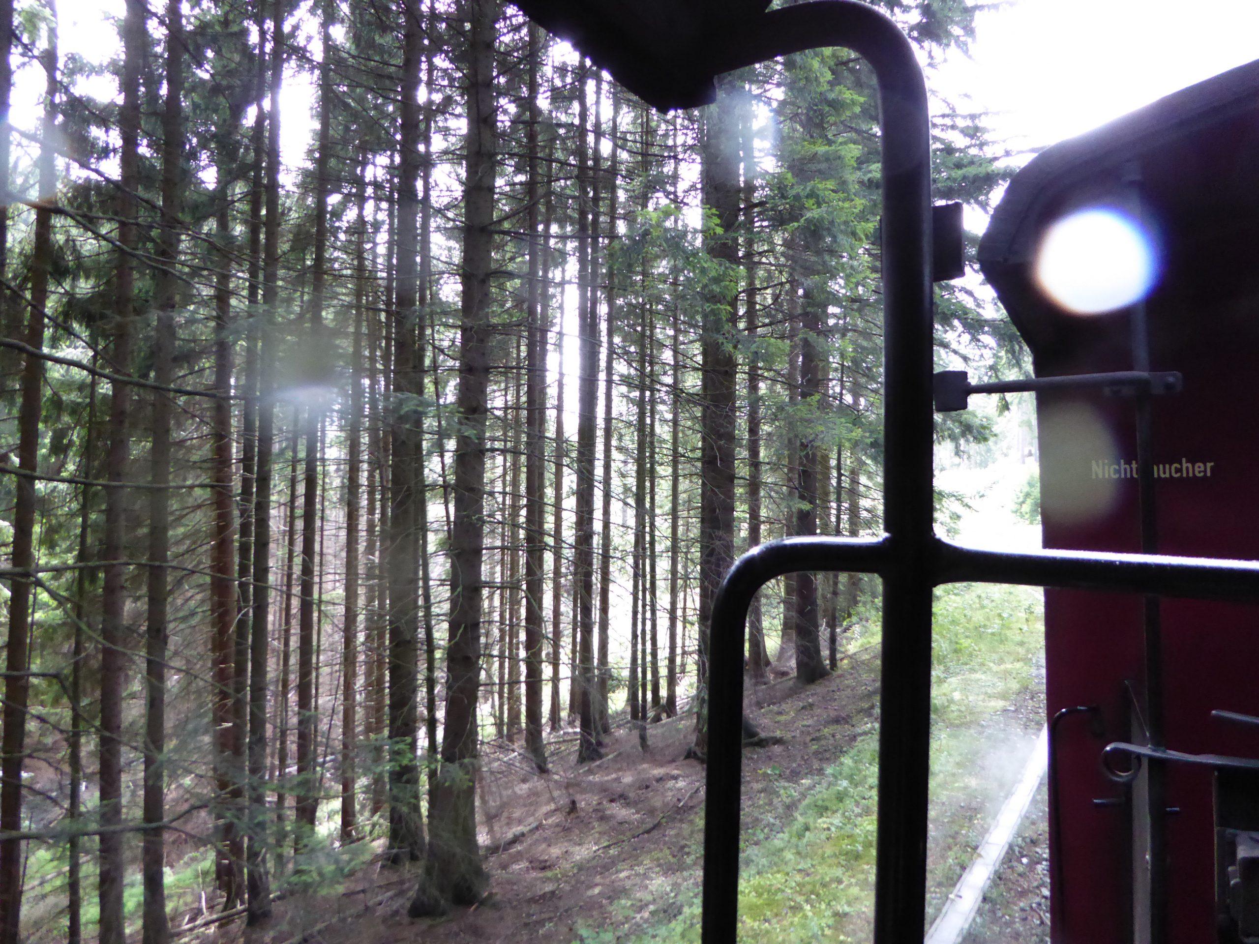 13 Harz Impr. 6