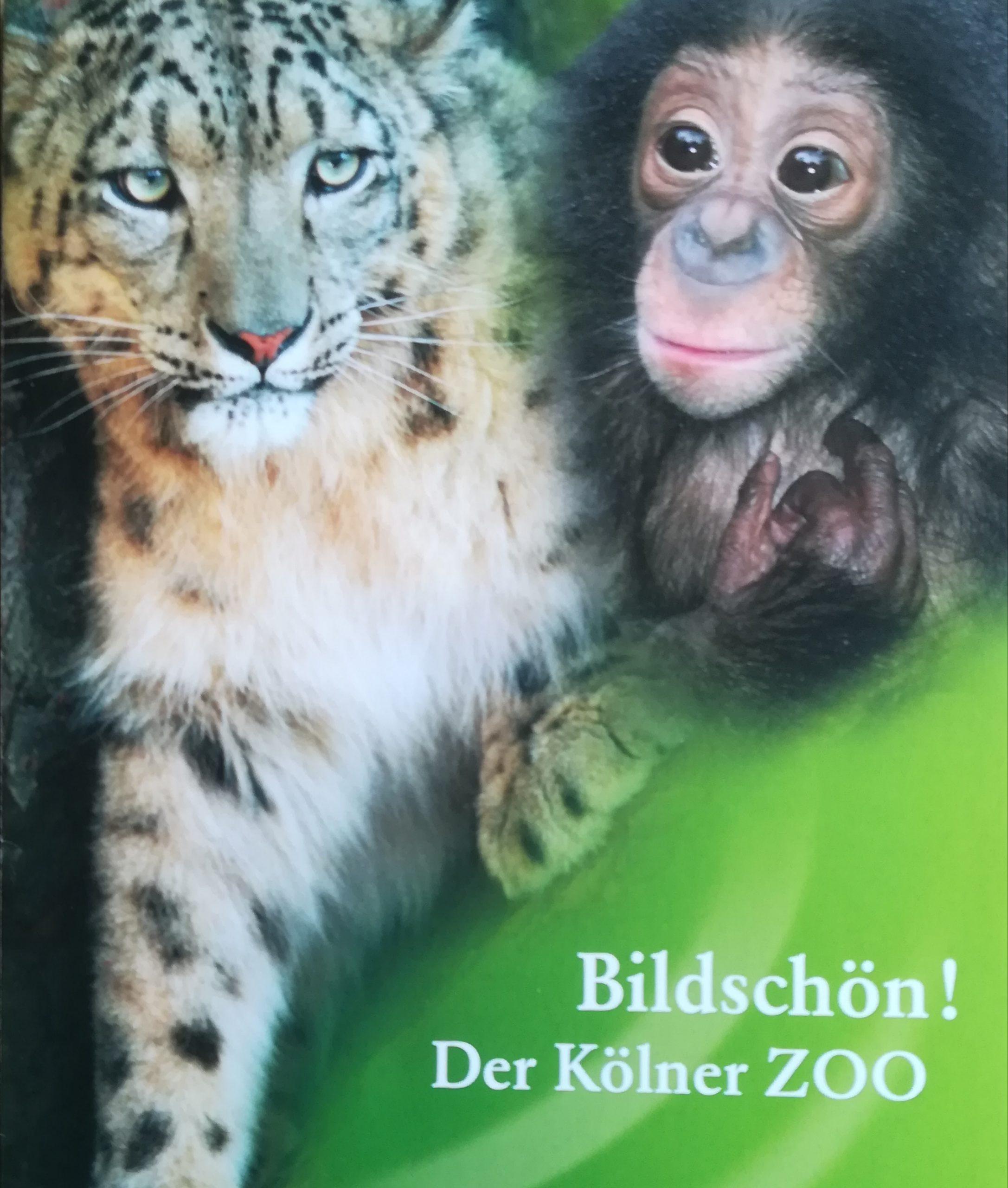 13 Zoo
